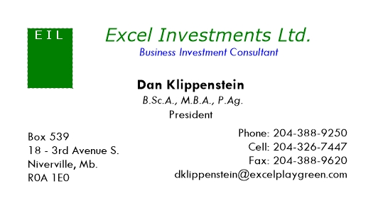 Business Investment Consultant - Excel Investments Ltd.